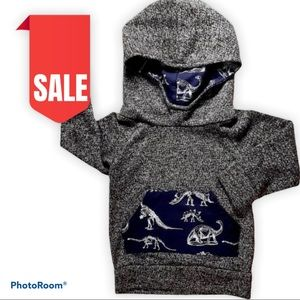 🎈2 for $15 Baby boy dinosaur hoodie size 12-18 m